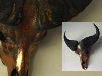 kafferbuffel-oud-goud