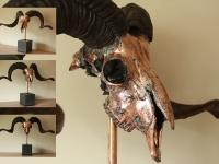 ram-skull