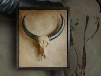 wandpaneel-waterbuffel-dv018-1808