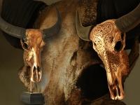 waterbuffel-op-sokkel-in-metalic-rose-goud