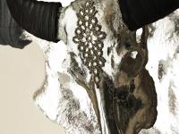 waterbuffel-schedel-zilver-wit-met-crystallen