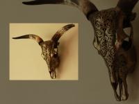 longhoorn-gegraveerd-gefinsihed-in-metalic-brons-en-met-wandbevestiging