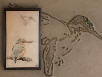 wandpaneel-ijsvogels-pan047-19-maat-62x103cm