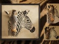 wandpaneel-met-zebra