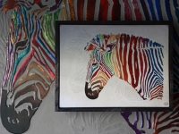zebra-multicolor-shadow-ii