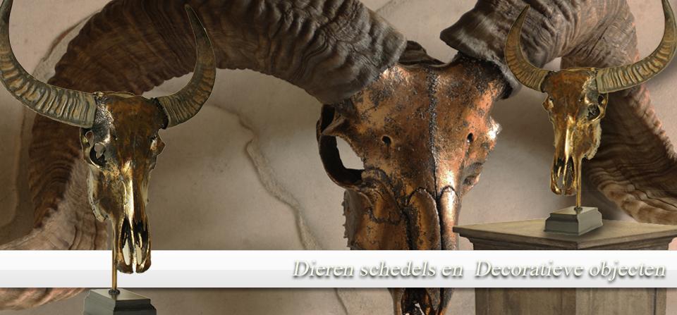 Decoratieve Objecten